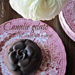 Camelie gelato al cioccolato e cocco